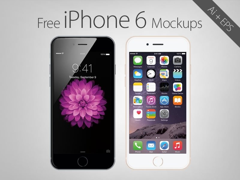 Free Vector Apple iPhone 6 Mockups