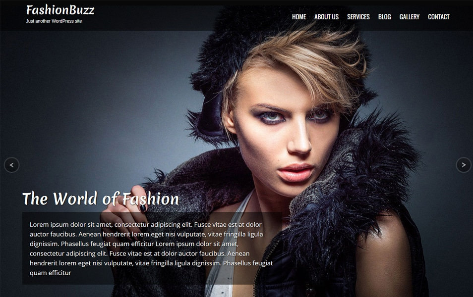 Fashionbuzz Responsive WordPress Theme