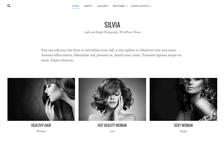 Silvia Responsive WordPress Theme