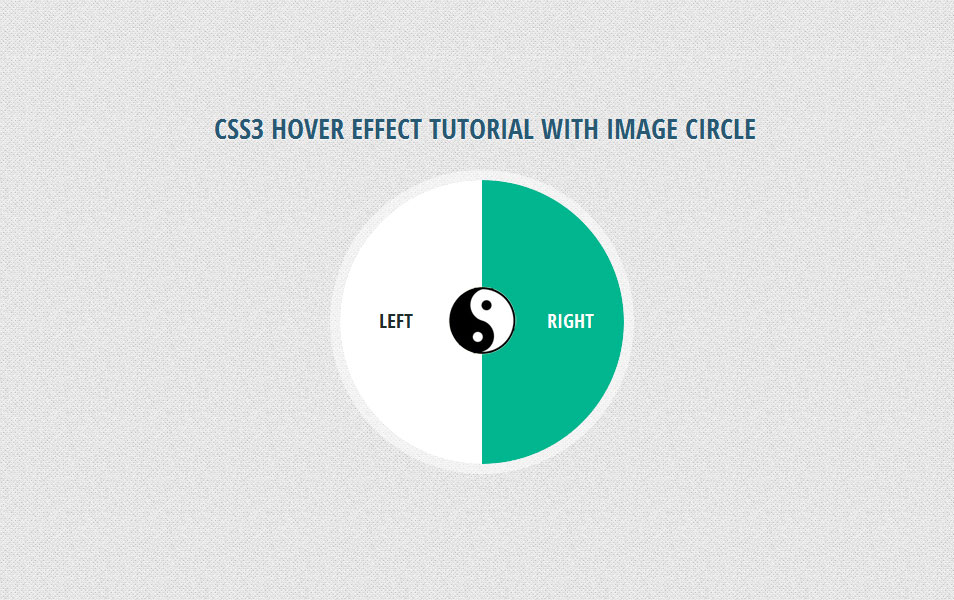 CSS3 Hover Effect Tutorial with Image Circle