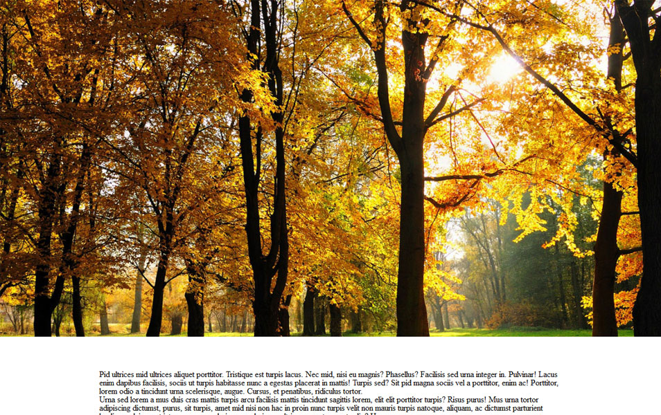 Parallax ImageScroll - jQuery plugin