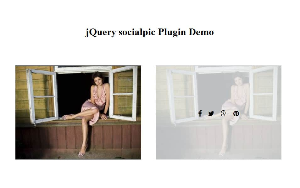 jQuery socialpic Plugin