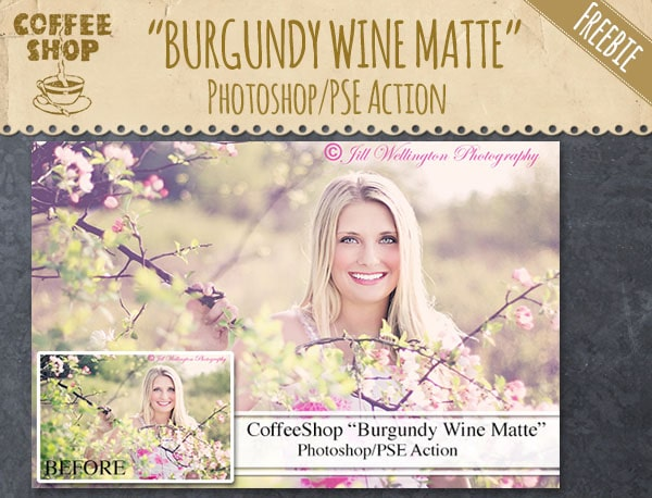 Burgundy Wine Matte Photoshop Action