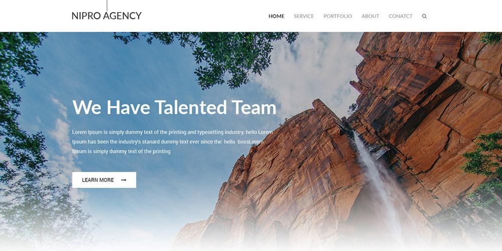 Nipro Free Agency Web Template PSD