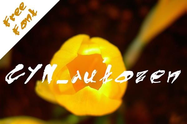 CYN-Autozen-Free-Font