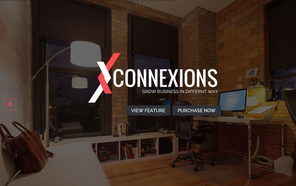 Connexions Lite WordPress Theme