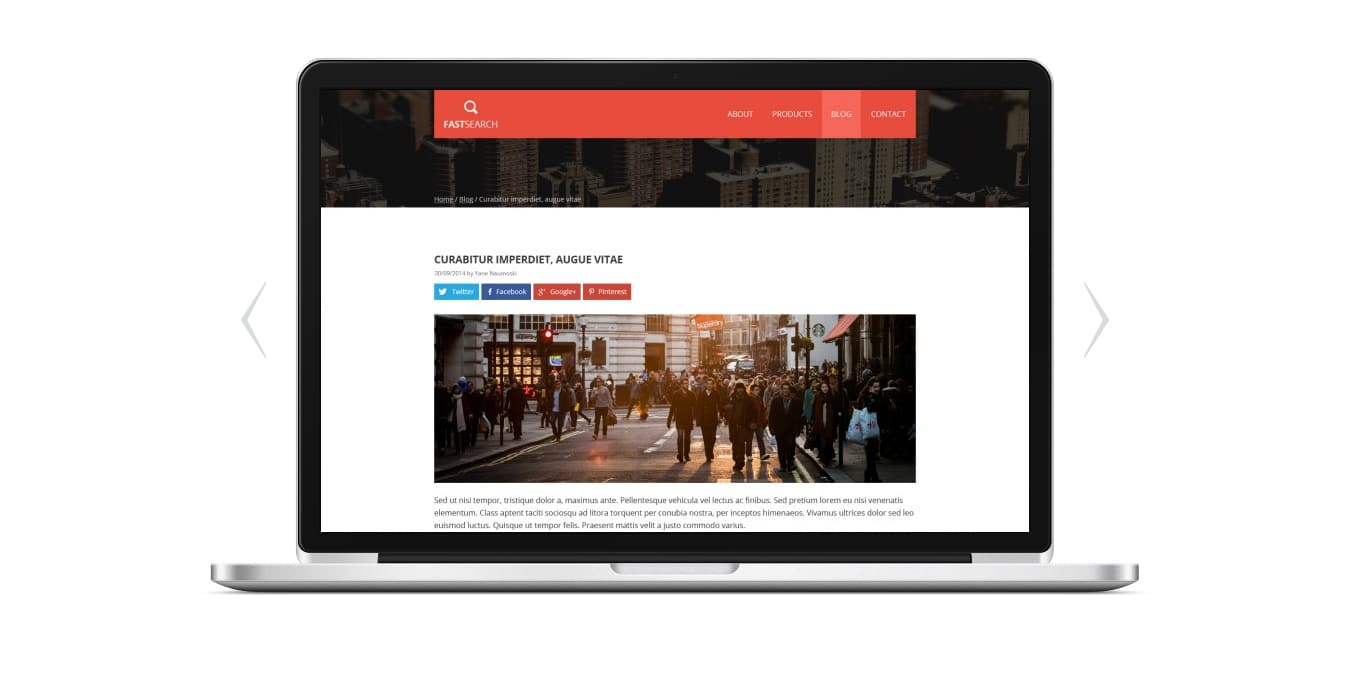 Fast Search Corporate Web Template PSD