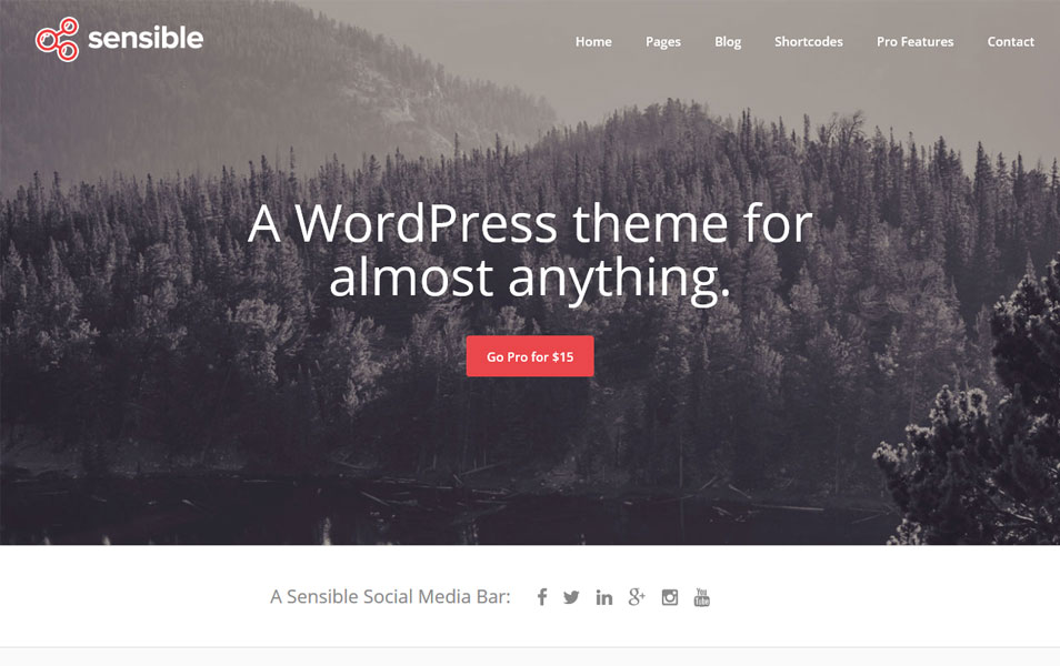 Sensible WordPress Theme