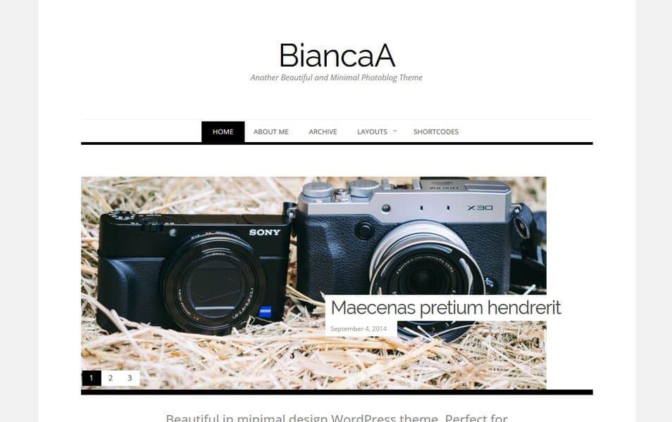 Biancaa Responsive WordPress Theme
