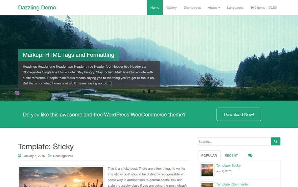 Dazzling Responsive WordPress Theme