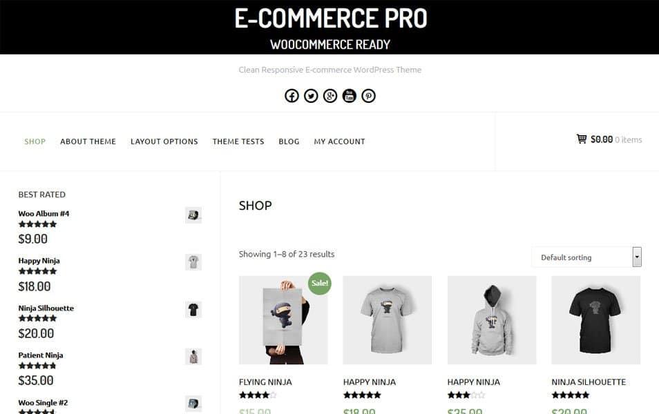 E-Commerce Responsive WordPress Theme