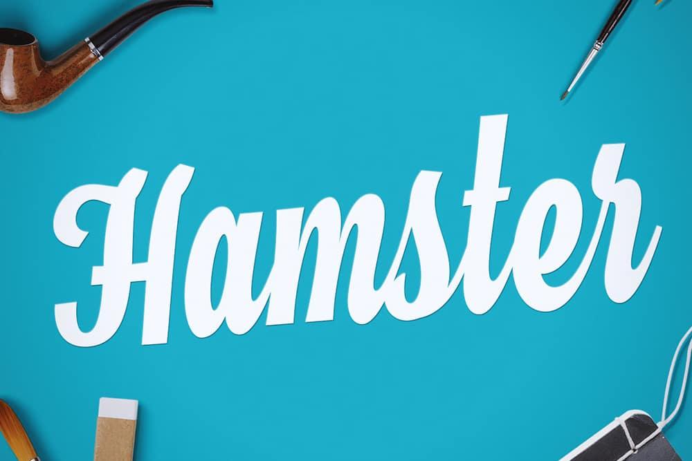 Hamster Script Free Font