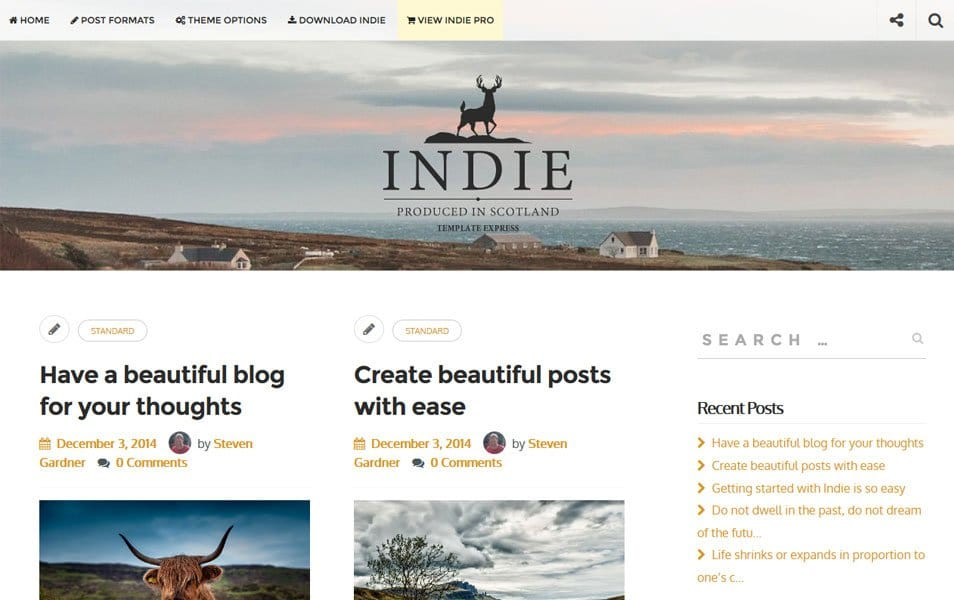 Indie Responsive WordPress Theme