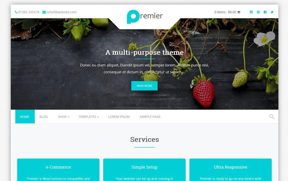 Premier Responsive WordPress Theme