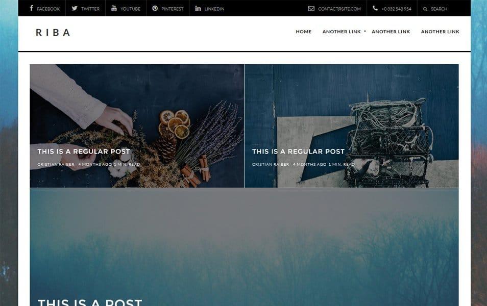 Riba Lite Responsive WordPress Theme