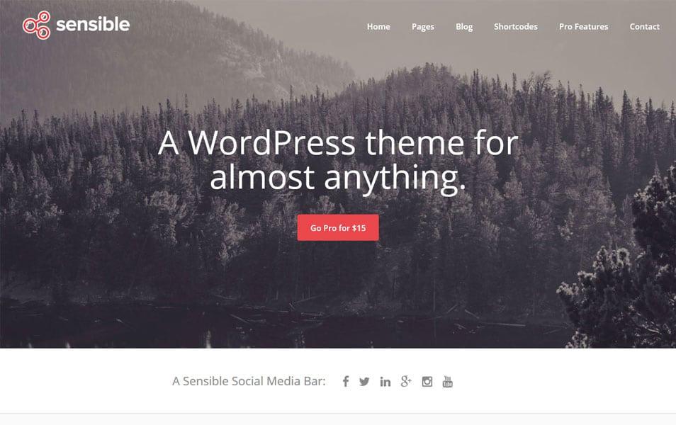 Sensible WP Responsive WordPress Theme