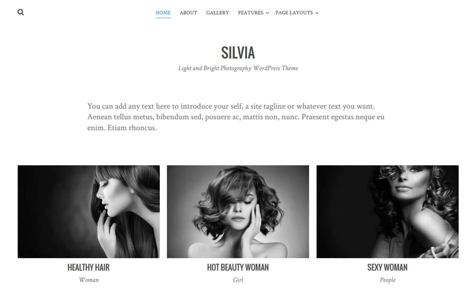 Silvia Responsive WordPress Theme
