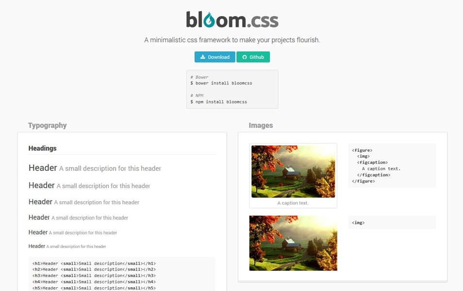bloom.css