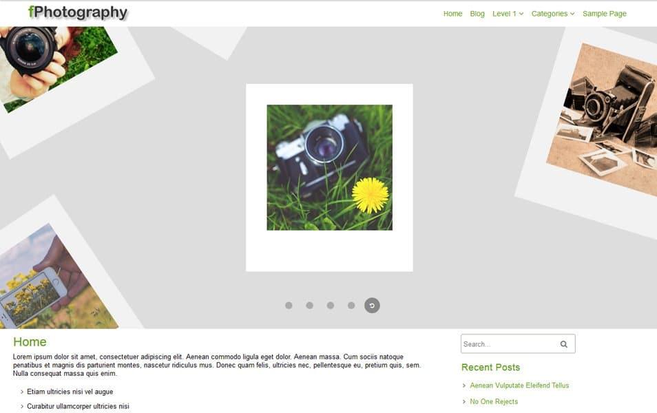 fPhotography Responsive WordPress Theme