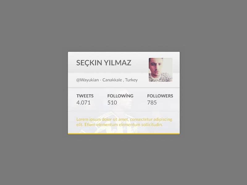 Twitter Widget PSD