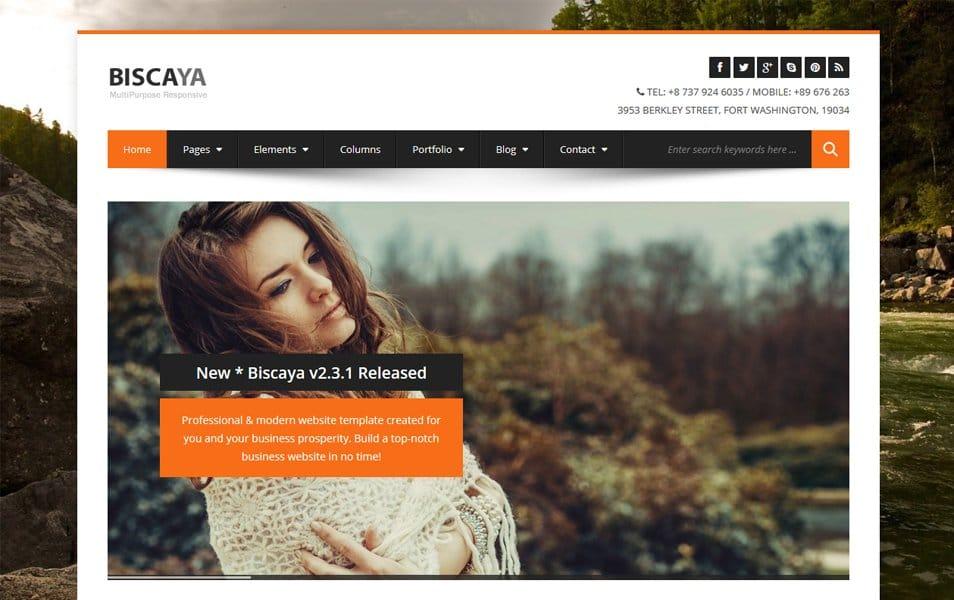 BiscayaLite Responsive WordPress Theme