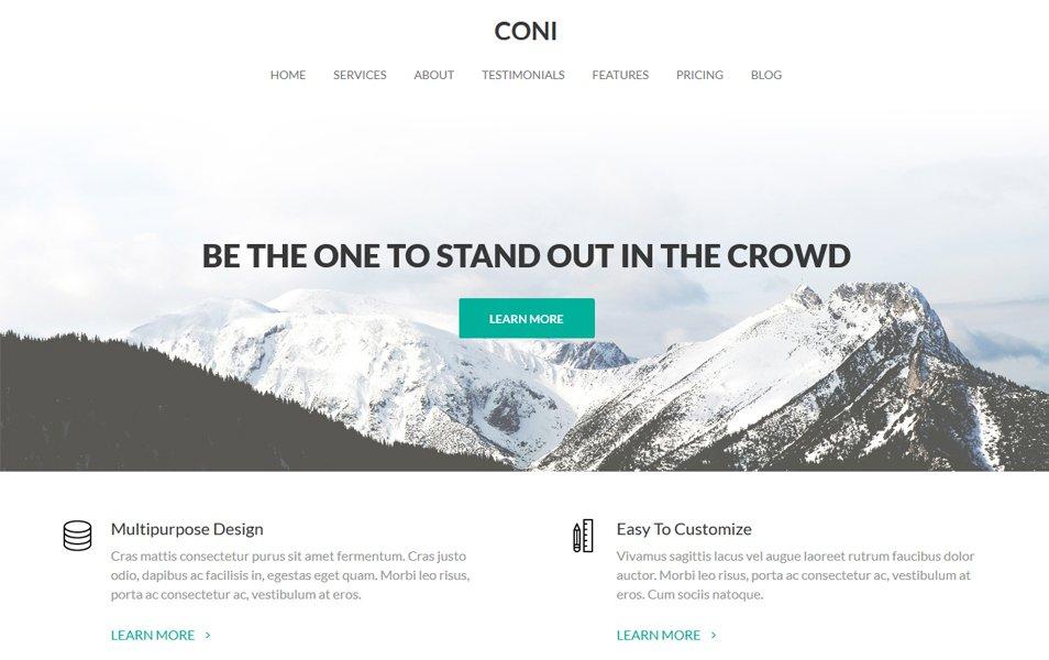 Coni Responsive WordPress Theme