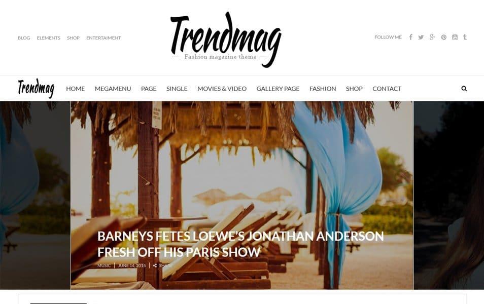TrendMag Responsive WordPress Theme