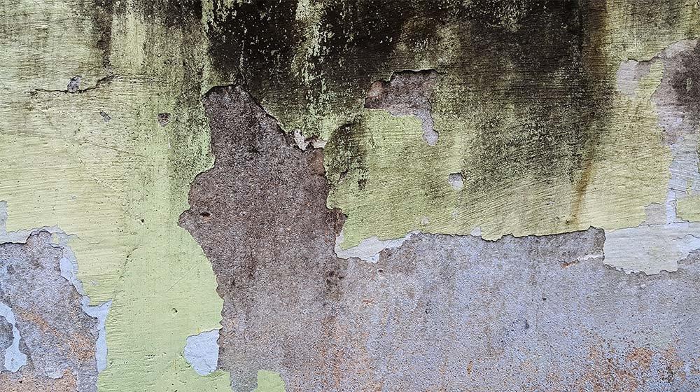 گرانج بافت دیوار
