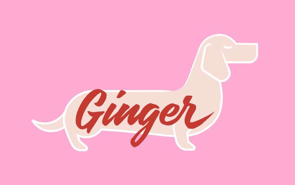 Ginger Grid