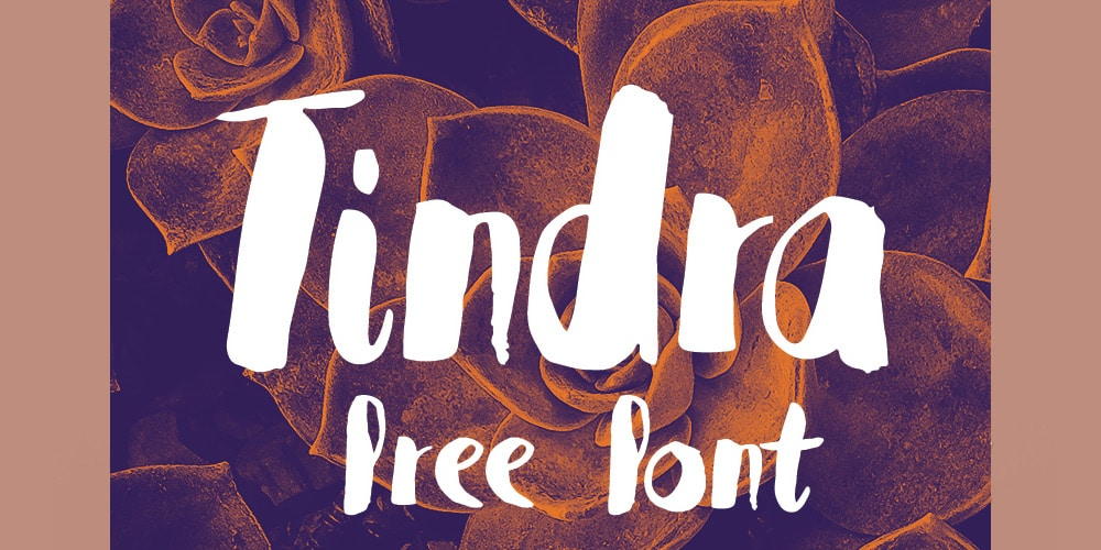 Tindra Free Font