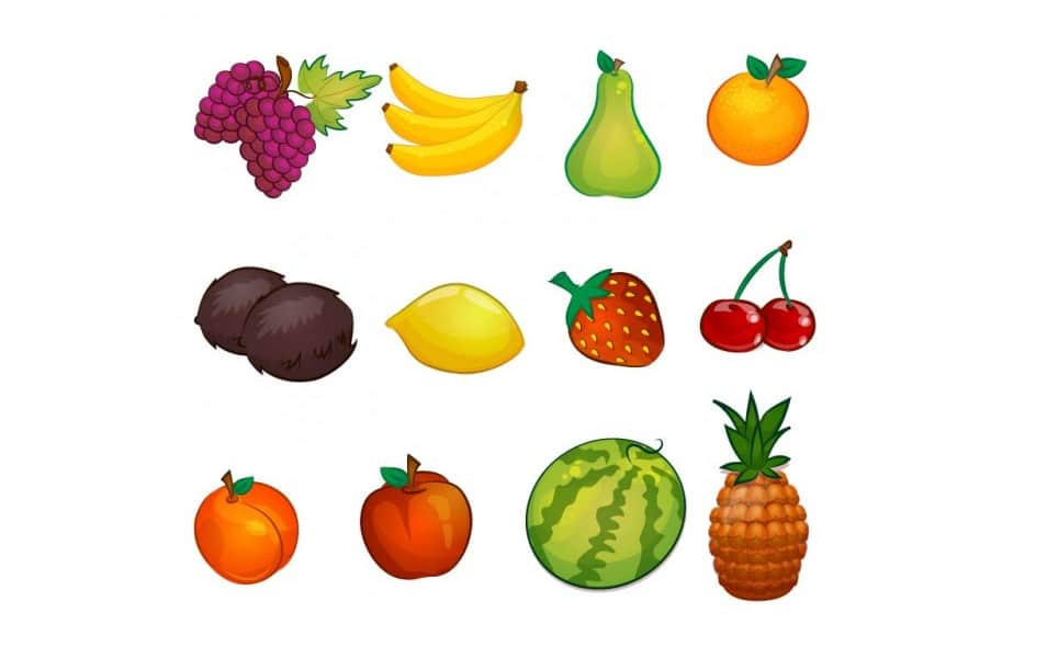 Fruit Illustrations Collection