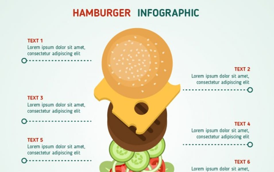 Hamburger infographic