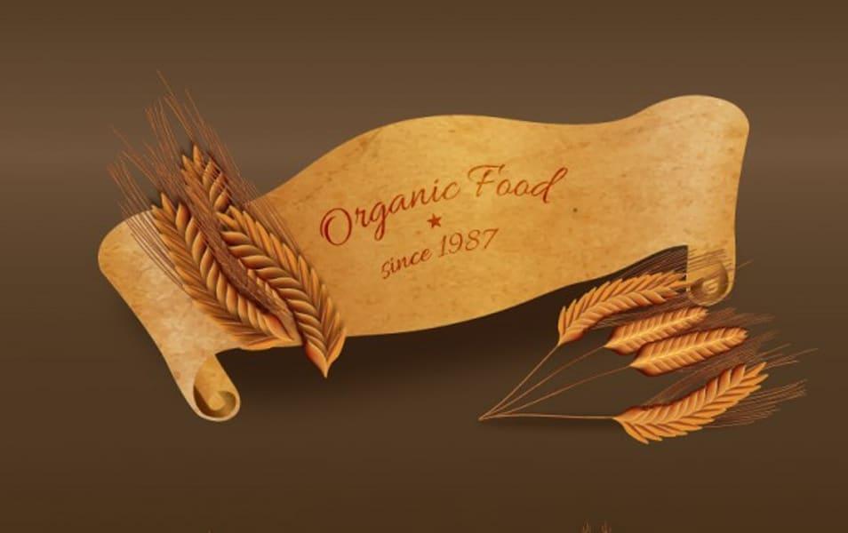 Organic food banners