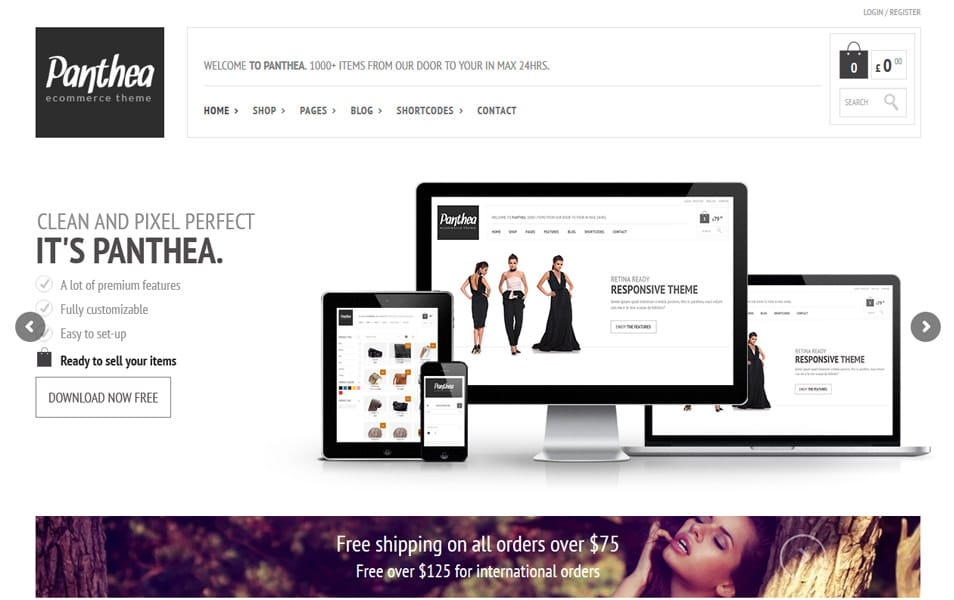 Panthea Responsive WordPress Theme