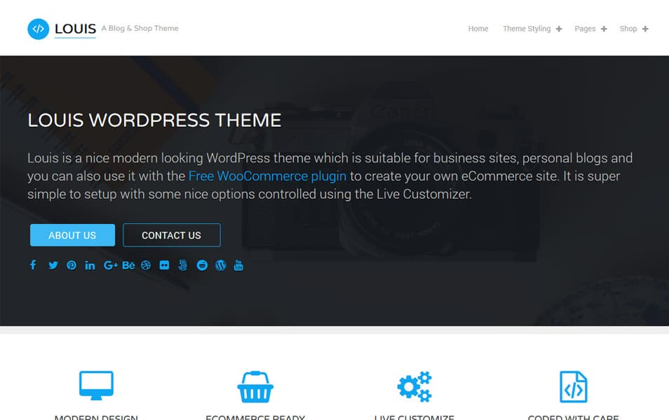 Louis Lite Responsive WordPress Theme