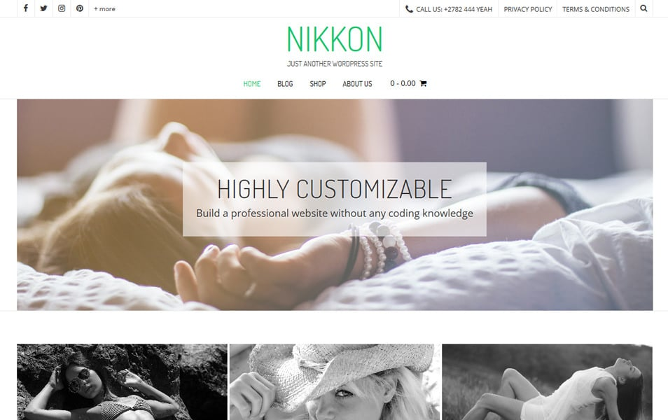 Nikkon Responsive WordPress Theme