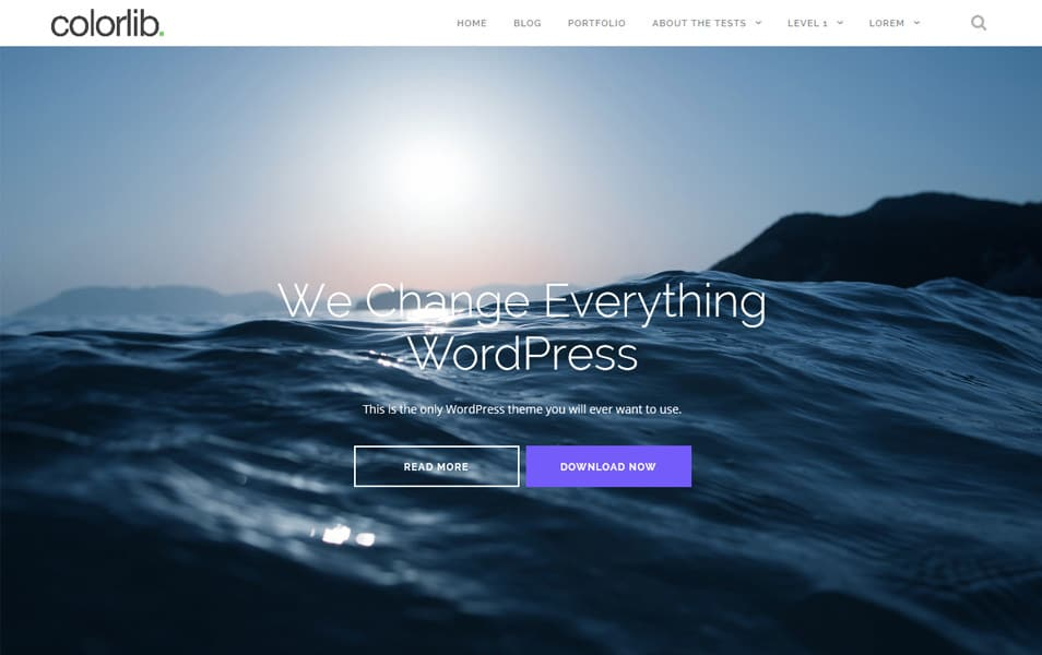 Shapely Responsive WordPress Theme
