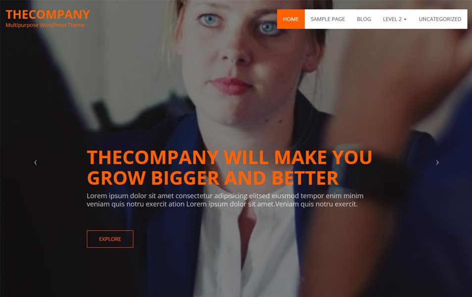 TheCompany Responsive WordPress Theme