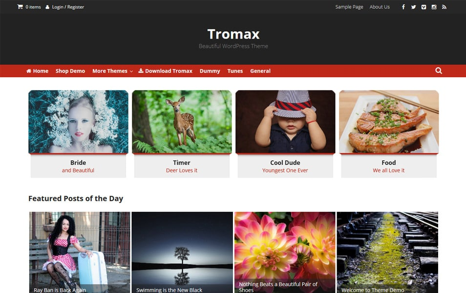 Tromax Responsive WordPress Theme