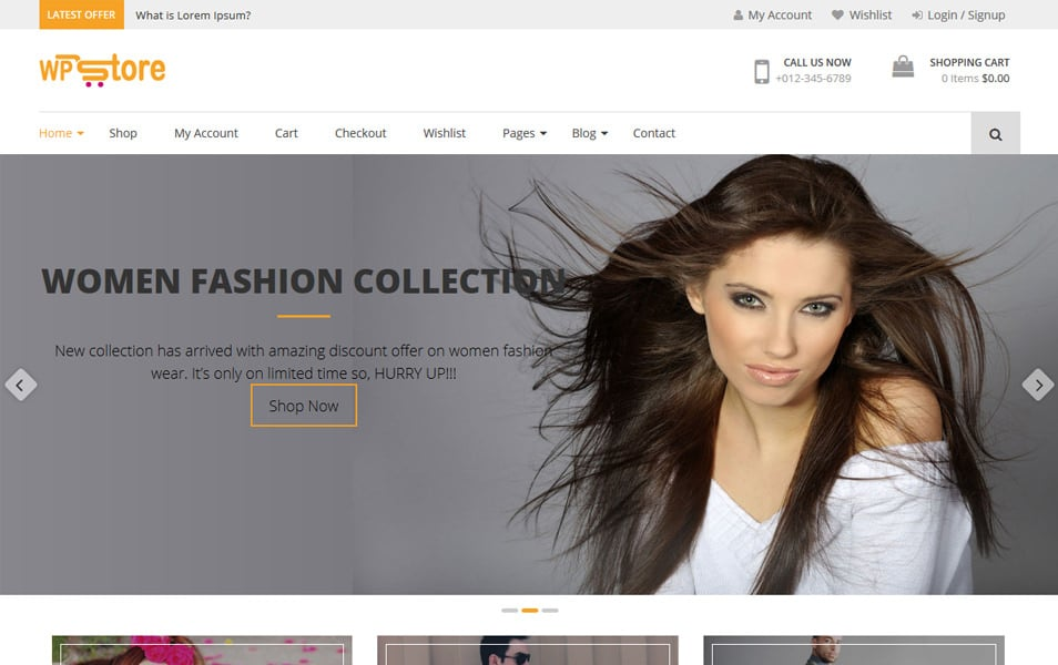 WP Store Responsive WordPress Theme