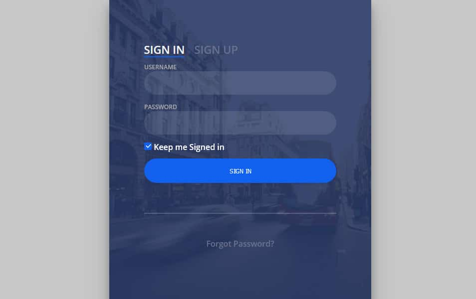 Day 001 Login Form