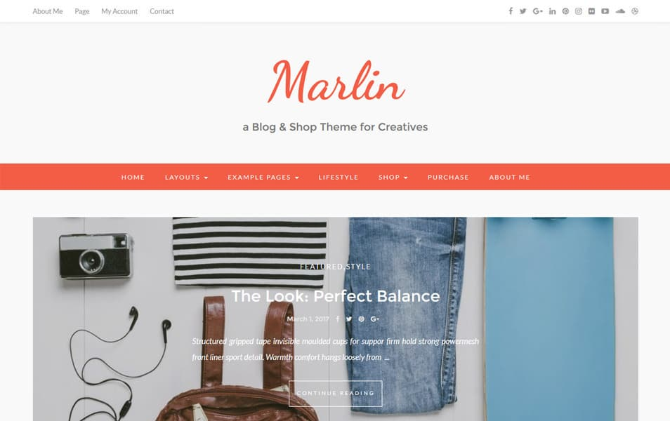 Marlin lite Responsive WordPress Theme