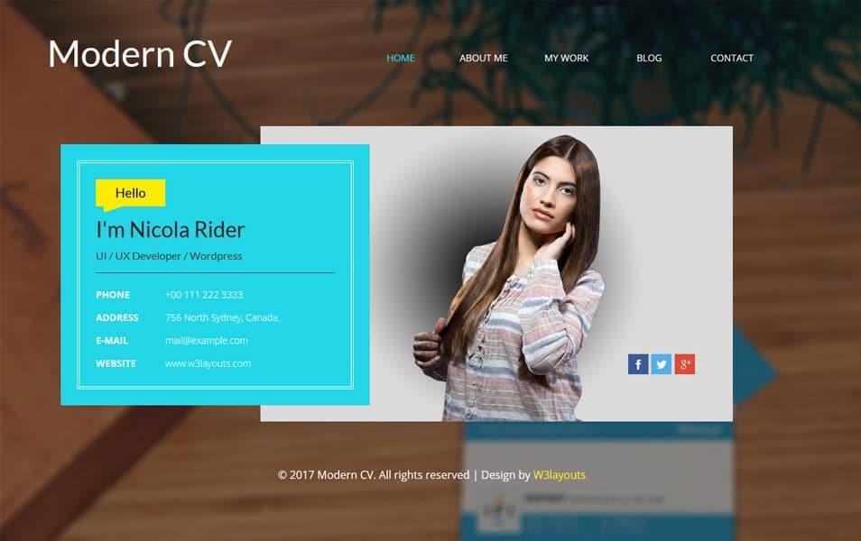 Modern CV