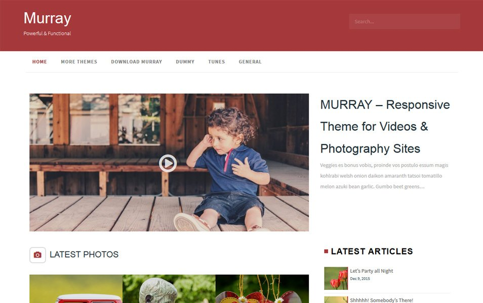 Murray Responsive WordPress Theme