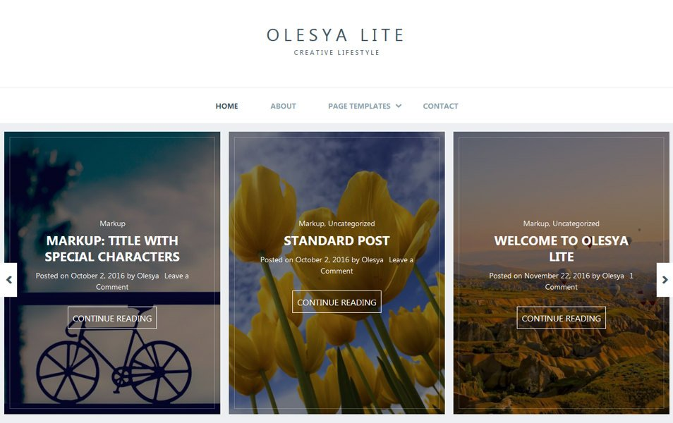 Olesya Lite Responsive WordPress Theme