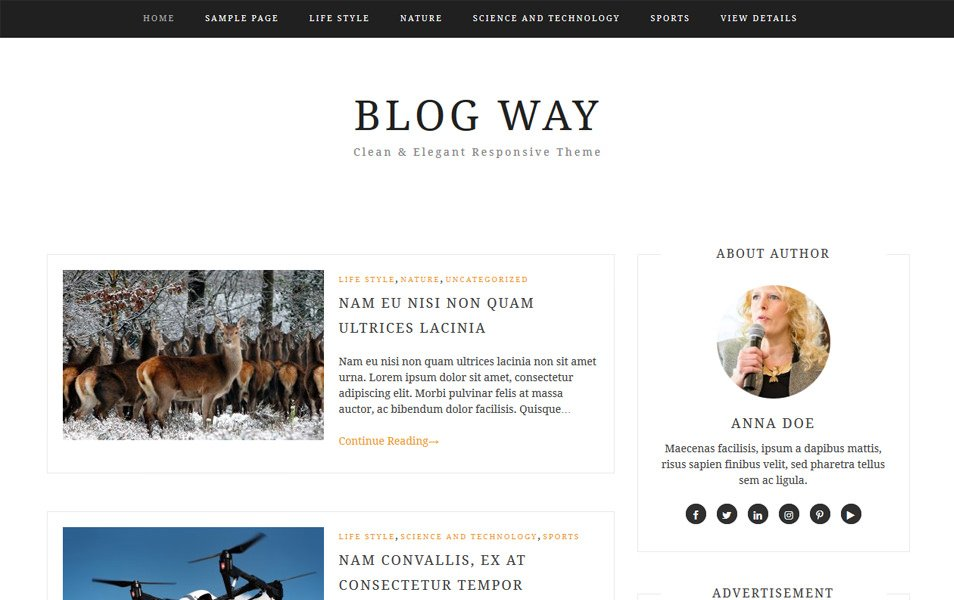 Blog Way Responsive WordPress Theme