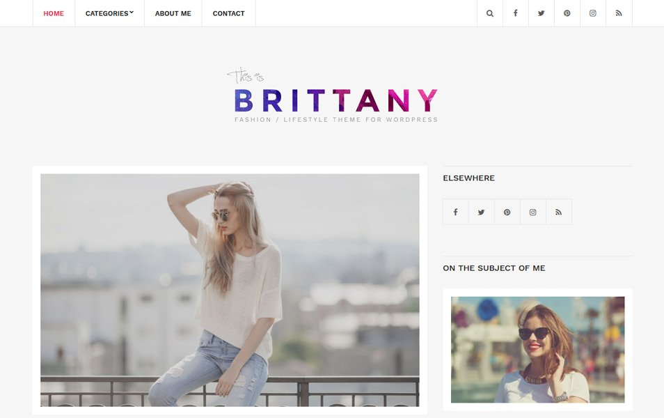 Brittany Light Responsive WordPress Theme