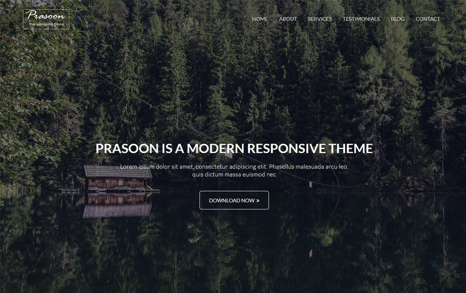 Prasoon Responsive WordPress Theme