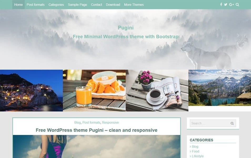 Pugini Responsive WordPress Theme