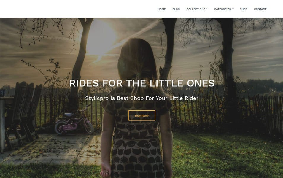 Stylic Responsive WordPress Theme